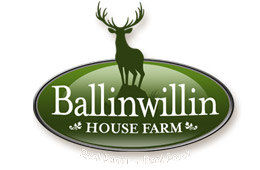 Ballinwillin